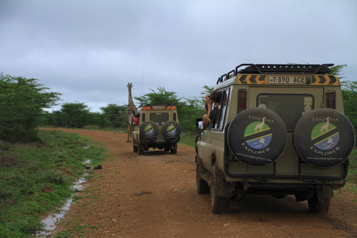 Game drive in Selous