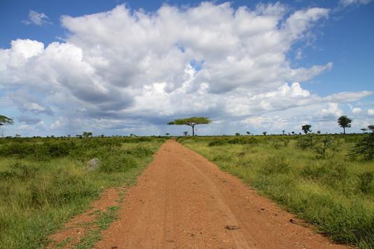 Selous road
