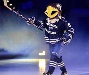 Ice Flyers!