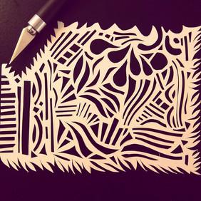 First Paper Cut