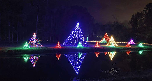 Christmas in the Country trees & pond