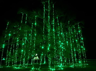 Christmas in the Country 60ft Emerald tree