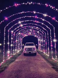 Christmas in the Country purple tunnel