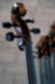 Nom de l'Artiste / Photo : Nom du Photographe ou DR