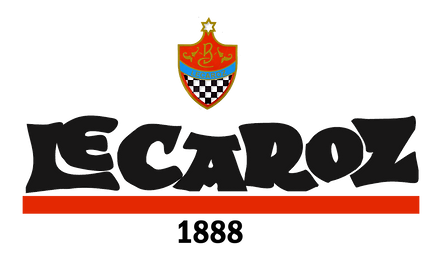 Logo Escudo DEFINITIVO.png