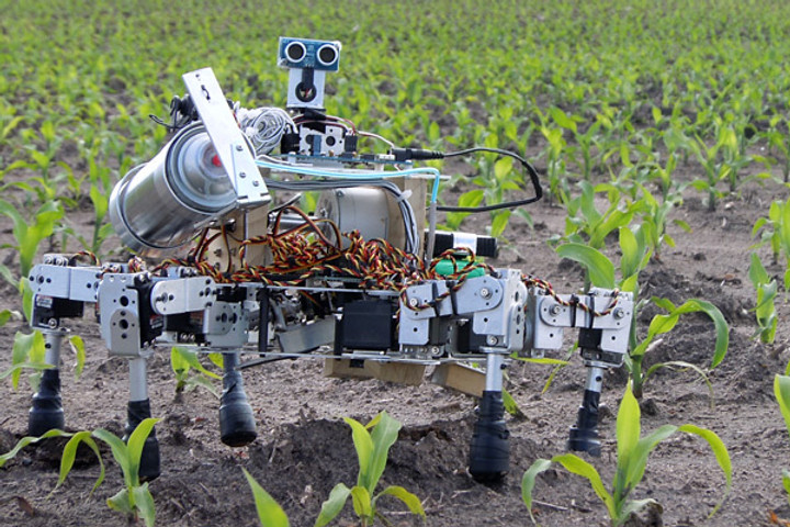 The Agriculture Industry Is Growing With AI