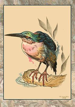 Heron21 - Anna.jpg