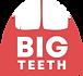 BTP Logo 2021.png