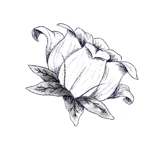Flowers_08.png