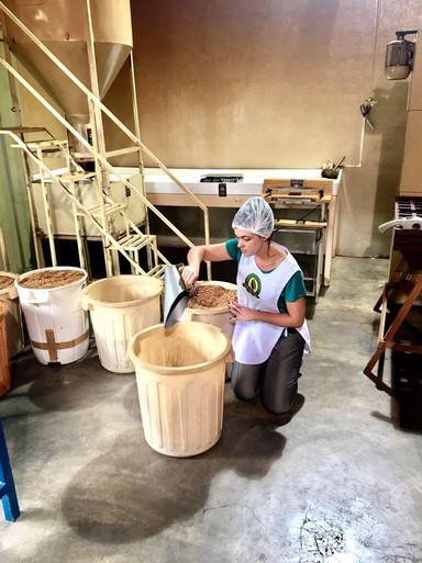 Nossa produtora Cíntia em meio aos processos do Café Selo Verde