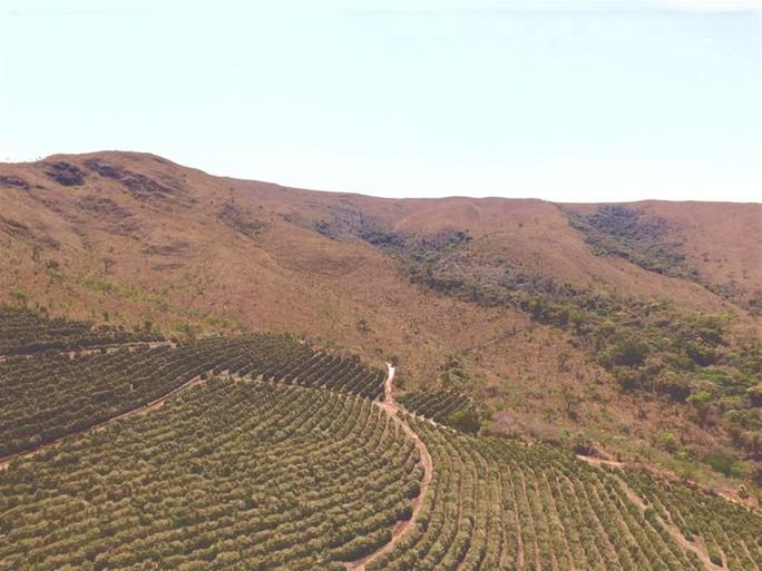 Alto da Serra de Boa Esperança! Nossa Fazenda