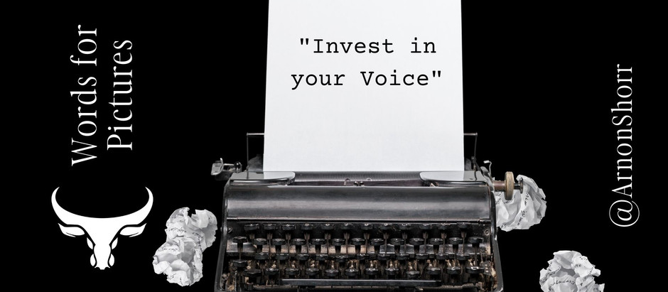 Invest in your Voice