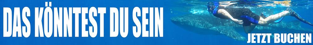 190424_whale_shark_banner_blue_du_de.png