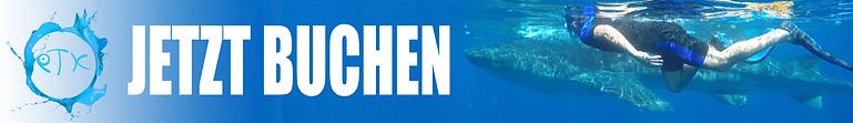 190424_whale_shark_banner_blue_buchen_de