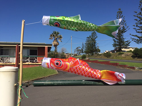 Fish wind Streamer Koinobori Green