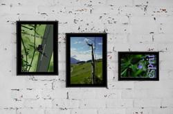 Exposition Balade Graphique