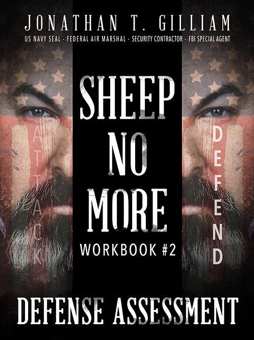 Sheep No More - Workbook#2