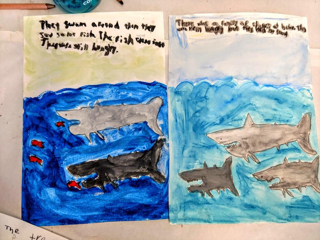 Sharks story