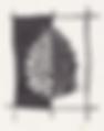 Logo Pigna.png