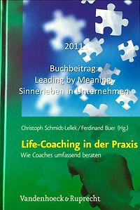 Buch_LeadingbyMeaning.jpg