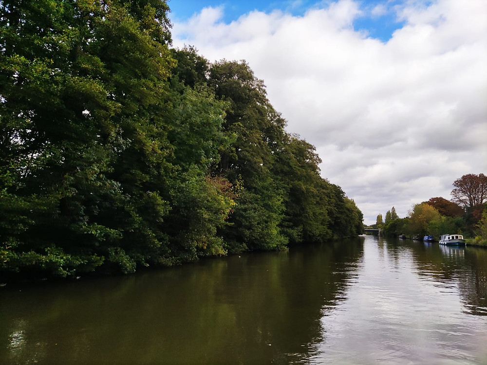 River Thames in autumn taken by Shepperton