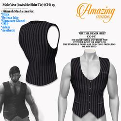 Male Vest (invisible Shirt Tie) (CH)   1