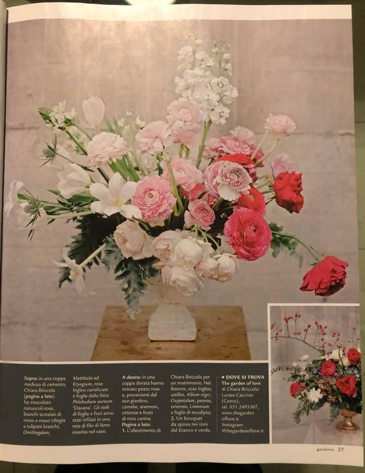 gardenia3.jpg