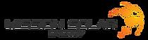 SOL-Logo-color.png