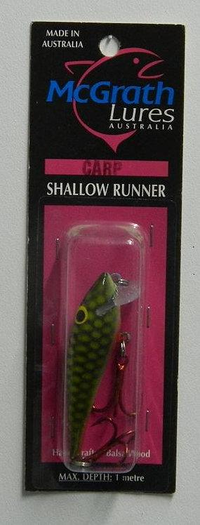 Shallow Runner - Carp
