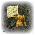 TolkienCorrected1-013.jpg