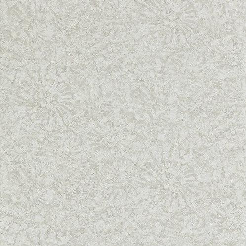 ANTHOLOGY - AMMONITE - 112560 PUMICE