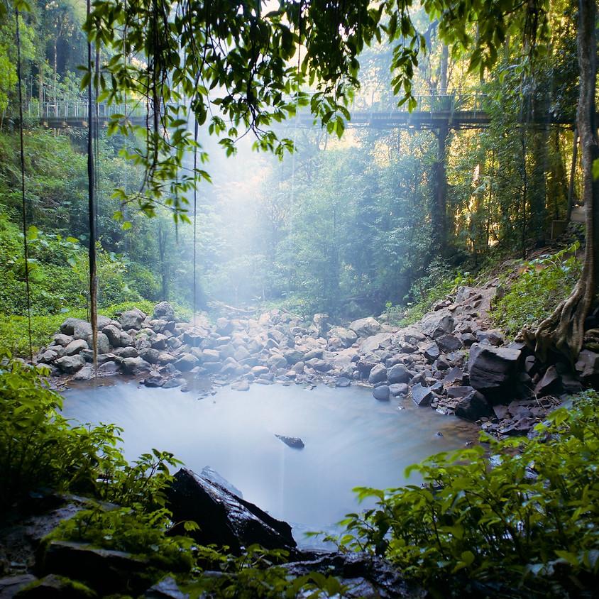 Waterfalls Tour - Barrington to Dorrigo NSW