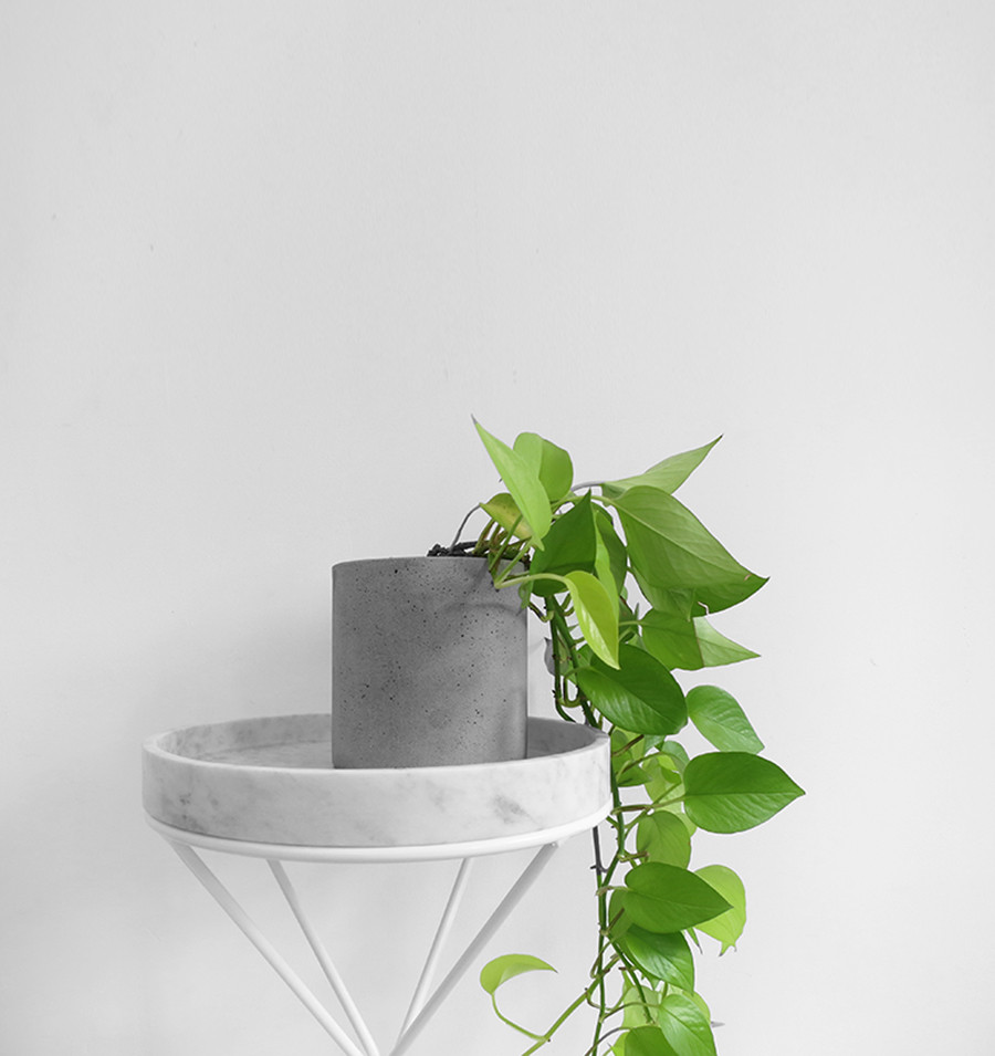 The-Minimalist-x-Plant-stand-with-marble.jpg