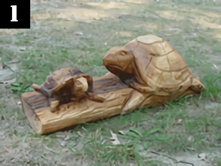 Turtles #1