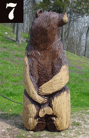 Bear #7