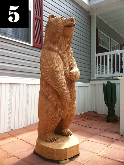Bears #5