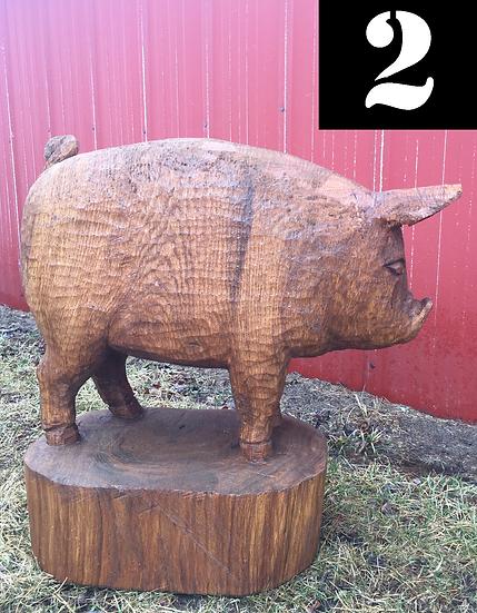 Pig #2