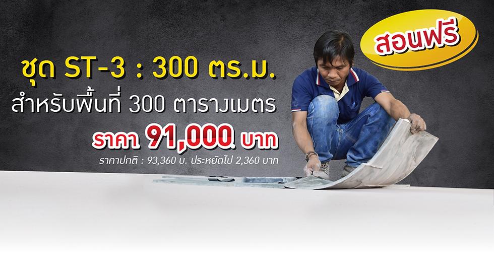 ST3-300 ตร.ม.png