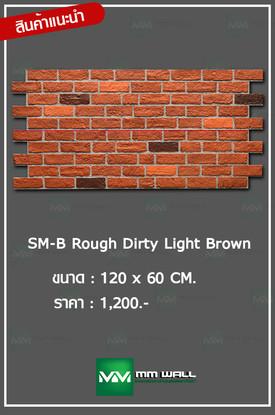 SM-B  Rough Dirty Light Brown.jpg