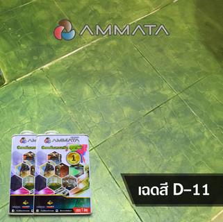 D-11.jpg