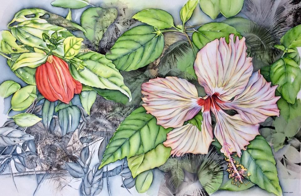 Hibiscus  Ilha Grande