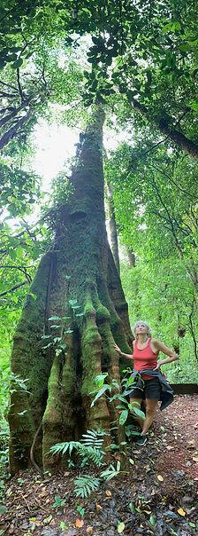 2020 Mathilde Wolff Costa Rica.jpg