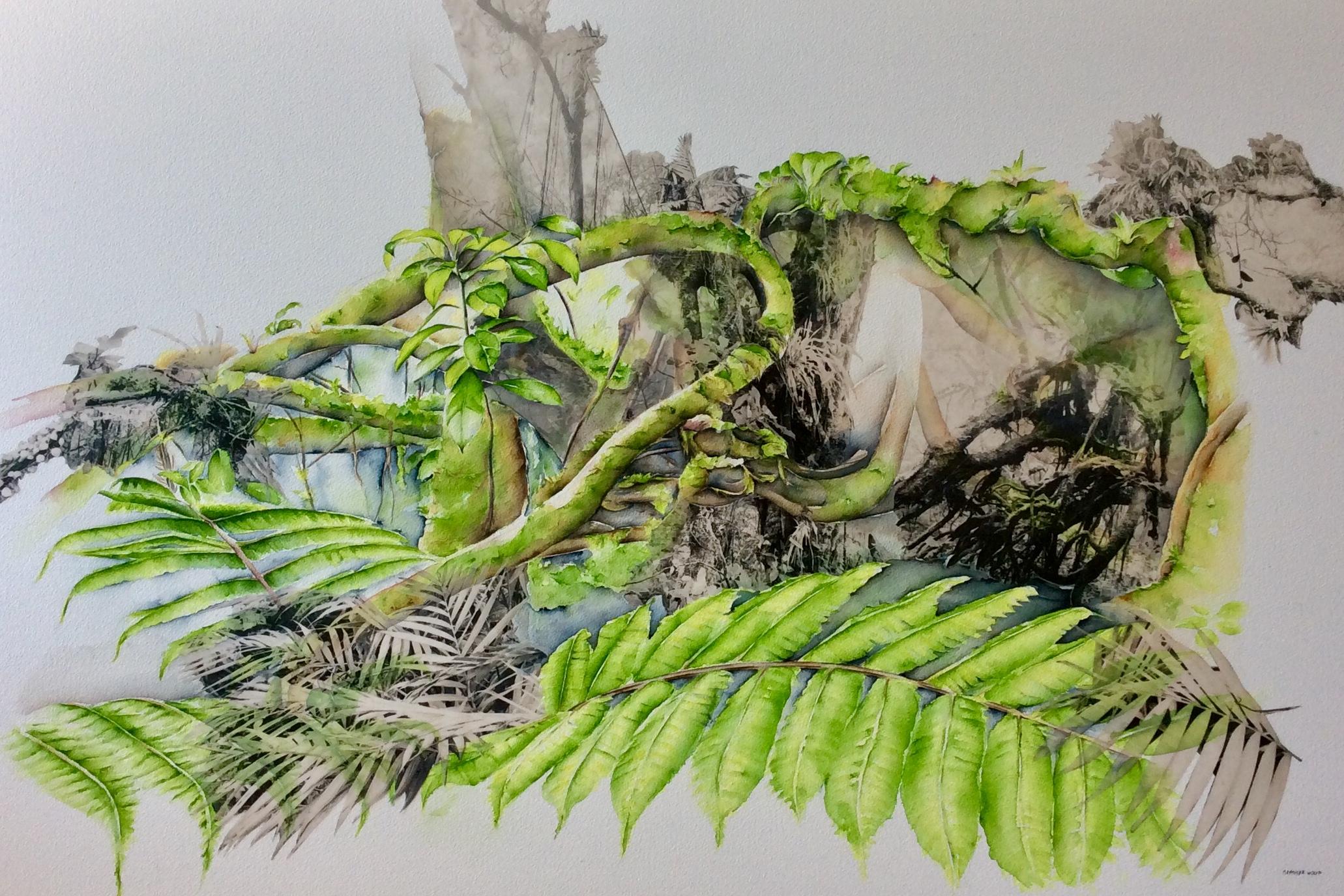 Cloud forest Mombacho Nicaragua III