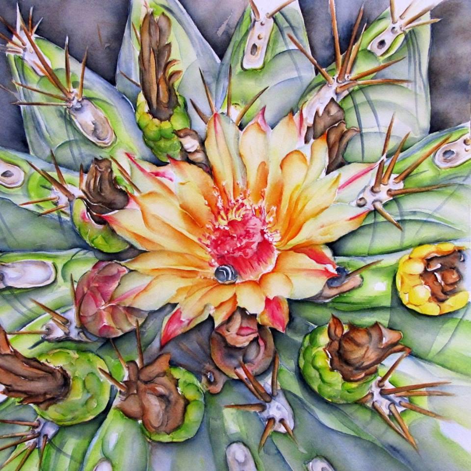 Fleur de cactus 50x50 cm