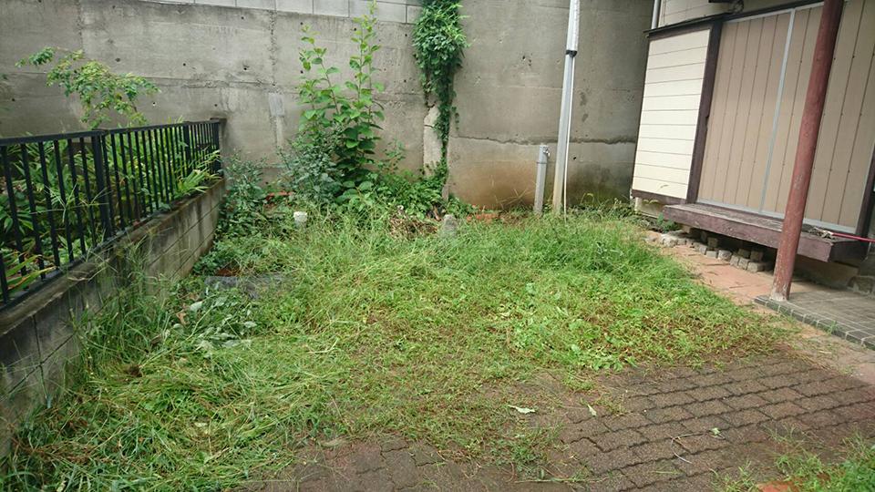 改修前の手付かずの庭