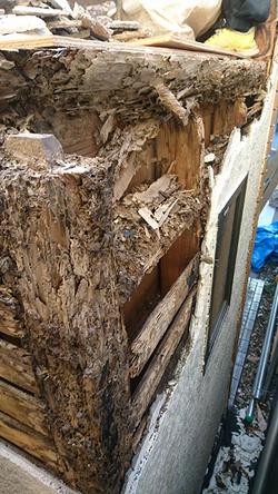 屋根と壁解体後の被害状況3