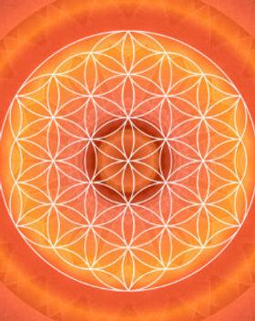 2_chakra_flower_of_life_orange_pet_tag-r