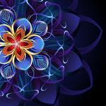 abstrakciya-uzor-cvetok-4612.jpg