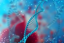Двенадцать слоев ДНК