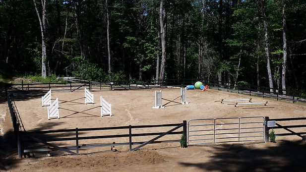 jumps, arena,horse